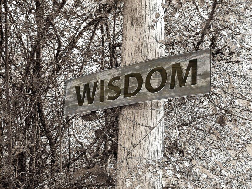 Wisdom, experience